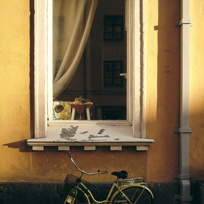 Polkupyörä, kissa ja ikkuna