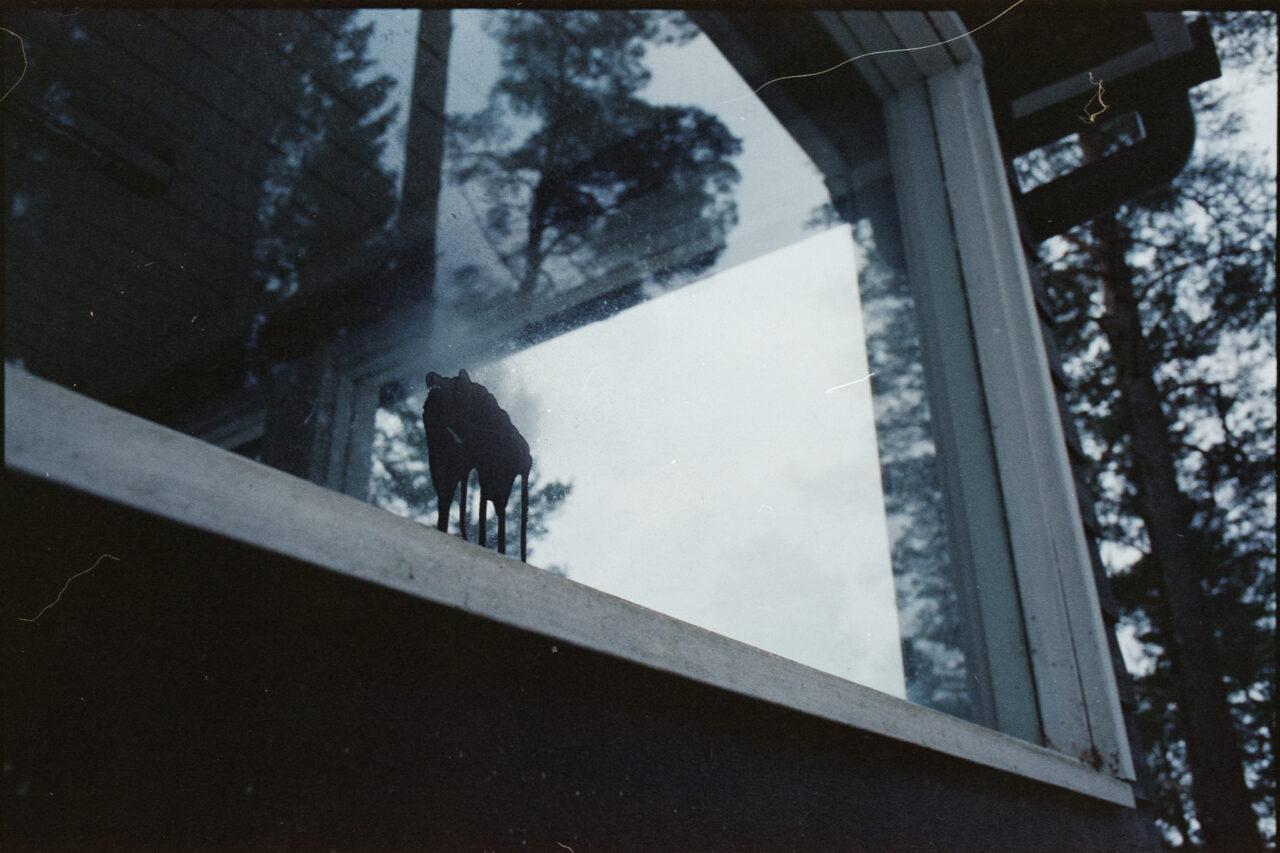 Värikuva, 35mm filmi